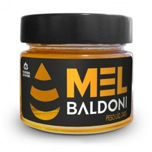 Mel Flores Silvestres Pote com  240g - BALDONI